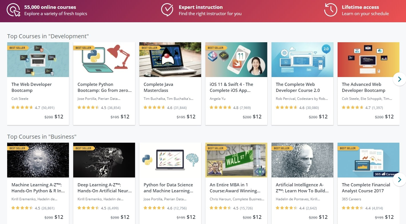 Udemy-Online Course Providers